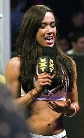 AJ Lee in WWE NXT