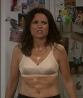 "Julia Louis-Dreyfus in ""The New Adventures of Old Christine"""