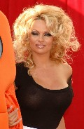 Pamela Anderson in Comedy Central's Roast