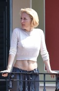 Gillian Anderson in see  through