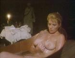 Artistic bbw nudes
