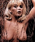 Stella Stevens nude in Unknown Magazine. Add comment Comments (0)